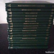 Enciclopedias de segunda mano: 78-ENCICLOPEDIA NATIONAL GEOGRAPHIC, EL MARAVILLOSO MUNDO DE LOS ANIMALES, 17 VOLUMENES, . Lote 172829349