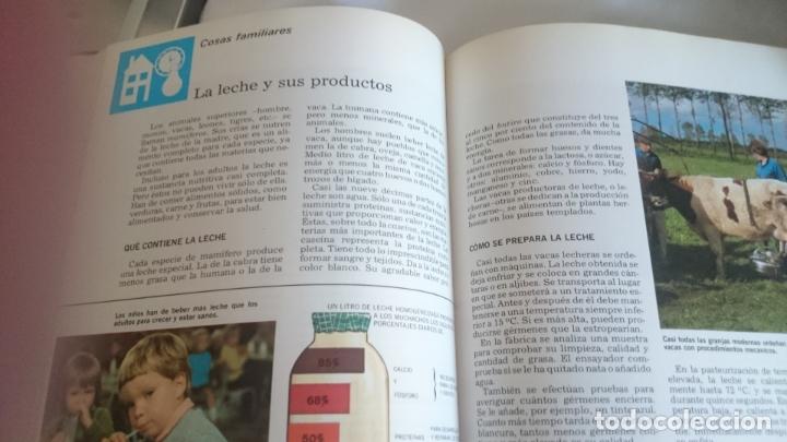 Enciclopedias de segunda mano: Entretenimiento y cultura para niños,jovenes y adultos - Foto 8 - 173430687