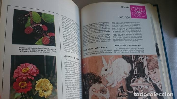 Enciclopedias de segunda mano: Entretenimiento y cultura para niños,jovenes y adultos - Foto 19 - 173430687