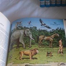 Enciclopedias de segunda mano: ENTRETENIMIENTO Y CULTURA PARA NIÑOS,JOVENES Y ADULTOS. Lote 173430687