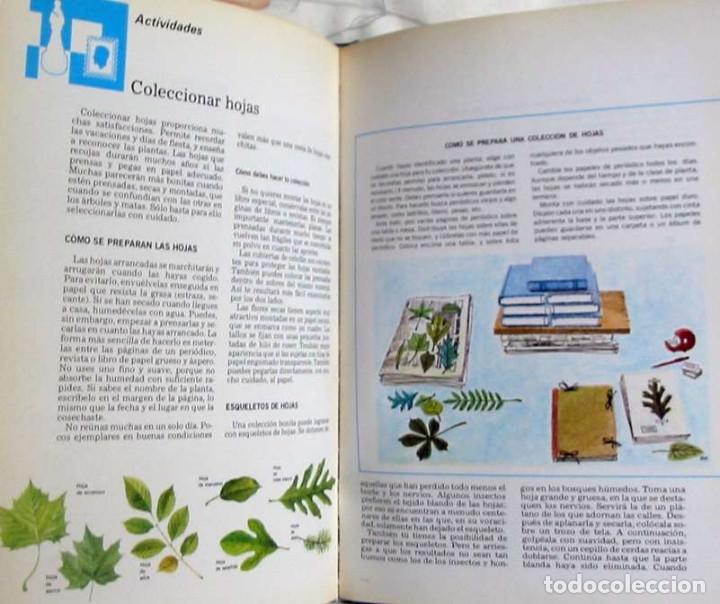 Enciclopedias de segunda mano: LECTUM JUVENIL - COMPLETA - ED. CREDSA 1980 - 4007 PÁGINAS - VER DESCRIPCIÓN Y FOTOS - Foto 5 - 175901774