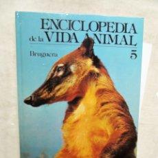Enciclopedias de segunda mano: ENCICLOPEDIA DE LA VIDA ANIMAL Nº 5 EDITORIAL BRUGUERA. Lote 178722476