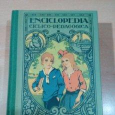 Enciclopedias de segunda mano: ENCICLOPEDIA CÍCLICO-PEDAGÓGICA GRADO MEDIO -JOSE DALMAU - FACSÍMIL 2007 - VER FOTOS. Lote 181429787