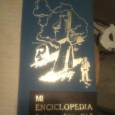 Enciclopedias de segunda mano: MI ENCICLOPEDIA. CONTINENTES Y PAÍSES VOL LL.PRIMERA EDICIÓN. Lote 182386226