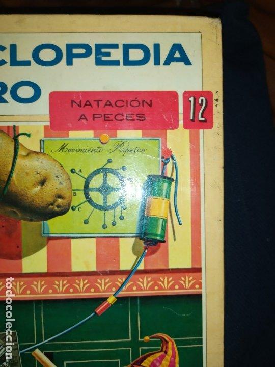 Enciclopedias de segunda mano: ENCICLOPEDIA DE ORO BERTHA MORRIS PARKER 1972/1973 NOVARO DUHART COUTO - Foto 12 - 182549035