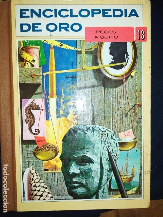 Enciclopedias de segunda mano: ENCICLOPEDIA DE ORO BERTHA MORRIS PARKER 1972/1973 NOVARO DUHART COUTO - Foto 13 - 182549035
