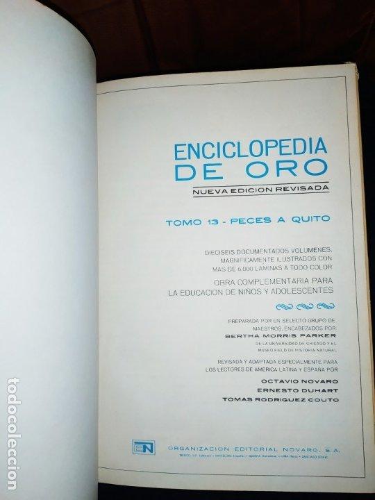 Enciclopedias de segunda mano: ENCICLOPEDIA DE ORO BERTHA MORRIS PARKER 1972/1973 NOVARO DUHART COUTO - Foto 21 - 182549035