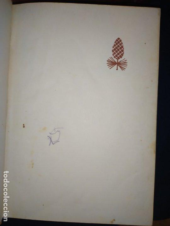 Enciclopedias de segunda mano: ENCICLOPEDIA DE ORO BERTHA MORRIS PARKER 1972/1973 NOVARO DUHART COUTO - Foto 28 - 182549035