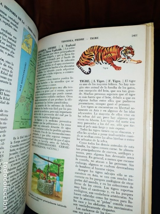 Enciclopedias de segunda mano: ENCICLOPEDIA DE ORO BERTHA MORRIS PARKER 1972/1973 NOVARO DUHART COUTO - Foto 29 - 182549035