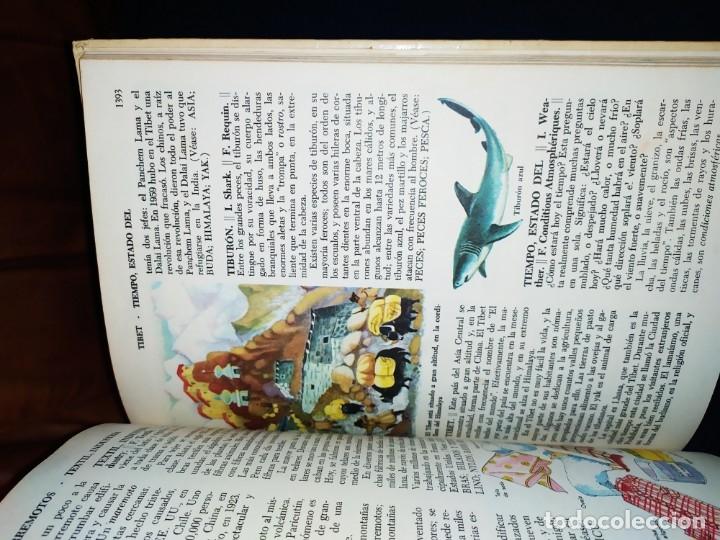 Enciclopedias de segunda mano: ENCICLOPEDIA DE ORO BERTHA MORRIS PARKER 1972/1973 NOVARO DUHART COUTO - Foto 30 - 182549035