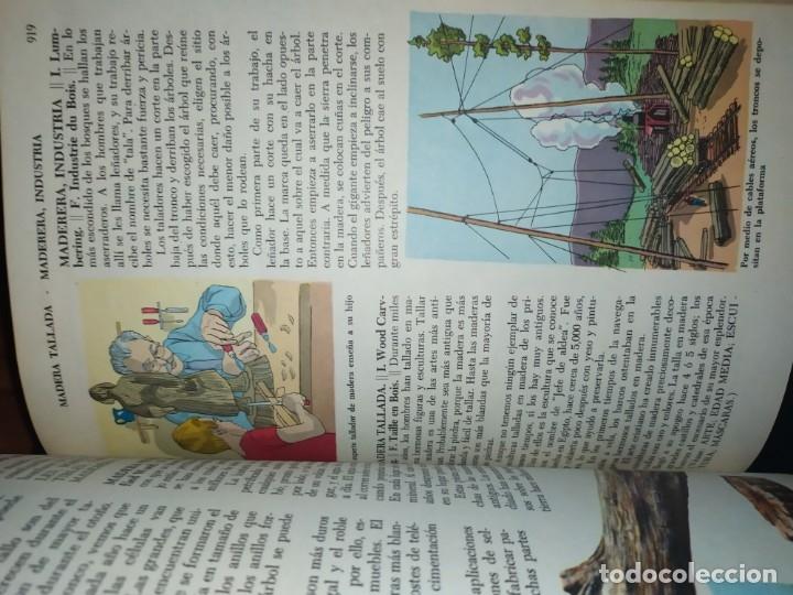 Enciclopedias de segunda mano: ENCICLOPEDIA DE ORO BERTHA MORRIS PARKER 1972/1973 NOVARO DUHART COUTO - Foto 44 - 182549035