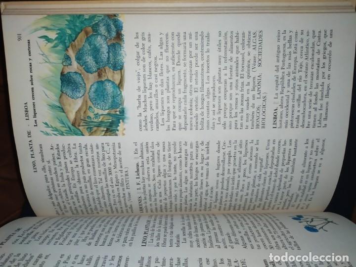 Enciclopedias de segunda mano: ENCICLOPEDIA DE ORO BERTHA MORRIS PARKER 1972/1973 NOVARO DUHART COUTO - Foto 45 - 182549035