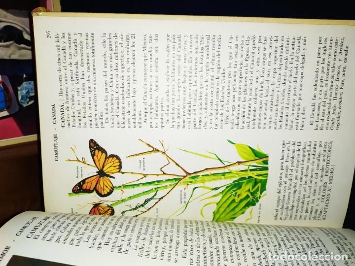 Enciclopedias de segunda mano: ENCICLOPEDIA DE ORO BERTHA MORRIS PARKER 1972/1973 NOVARO DUHART COUTO - Foto 59 - 182549035