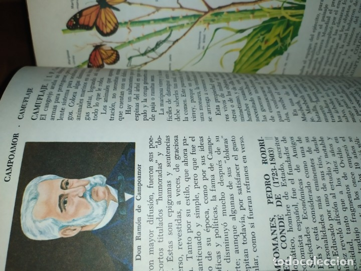 Enciclopedias de segunda mano: ENCICLOPEDIA DE ORO BERTHA MORRIS PARKER 1972/1973 NOVARO DUHART COUTO - Foto 60 - 182549035