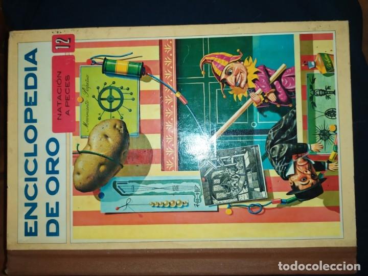 Enciclopedias de segunda mano: ENCICLOPEDIA DE ORO BERTHA MORRIS PARKER 1972/1973 NOVARO DUHART COUTO - Foto 66 - 182549035