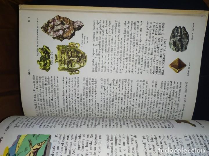Enciclopedias de segunda mano: ENCICLOPEDIA DE ORO BERTHA MORRIS PARKER 1972/1973 NOVARO DUHART COUTO - Foto 71 - 182549035