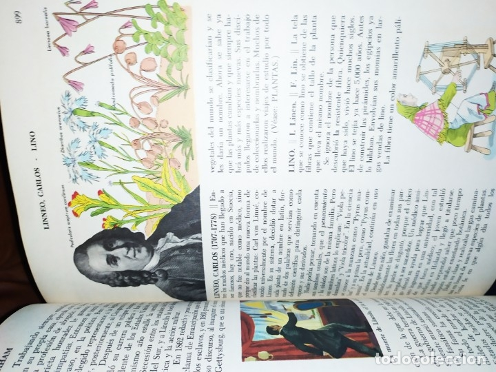 Enciclopedias de segunda mano: ENCICLOPEDIA DE ORO BERTHA MORRIS PARKER 1972/1973 NOVARO DUHART COUTO - Foto 89 - 182549035