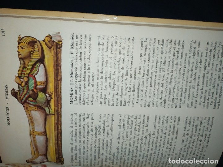 Enciclopedias de segunda mano: ENCICLOPEDIA DE ORO BERTHA MORRIS PARKER 1972/1973 NOVARO DUHART COUTO - Foto 97 - 182549035