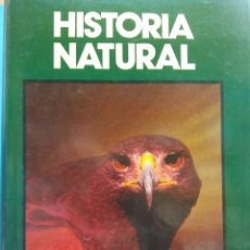 Enciclopedias de segunda mano: HISTORIA NATURAL. FAUNA. LAS AVES.FERNANDO ALONSO. JOSEFA ALONSO. CLUB INTERNACIONAL DEL LIBRO. Lote 182966813