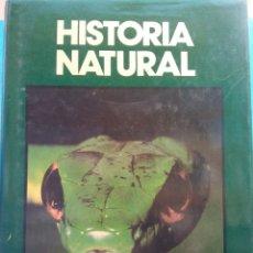 Enciclopedias de segunda mano: HISTORIA NATURAL. FAUNA. ANIMALES TERRESTRES Y ANFIBIOS. JOSEFA ALONSO. CLUB INTERNACIONAL DEL LIBRO. Lote 182966983
