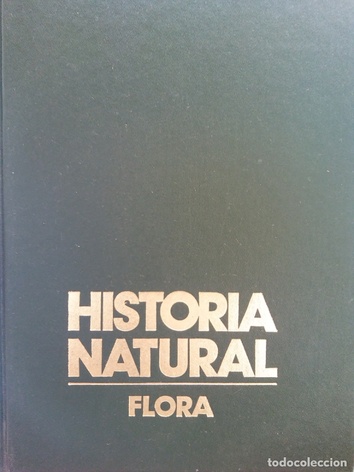 HISTORIA NATURAL. FLORA. LA VIDA DE LAS PLANTAS. JOSEFA ALONSO. CLUB INTERNACIONAL DEL LIBRO (Libros de Segunda Mano - Enciclopedias)