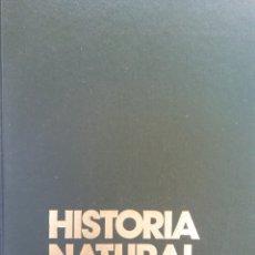 Enciclopedias de segunda mano: HISTORIA NATURAL. FLORA. LA VIDA DE LAS PLANTAS. JOSEFA ALONSO. CLUB INTERNACIONAL DEL LIBRO. Lote 182970081