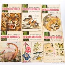 Enciclopedias de segunda mano: 6 FASCÍCULOS DE LA ENCICLOPEDIA DE CIENCIAS NATURALES. BRUGUERA. 1967. Lote 183215988