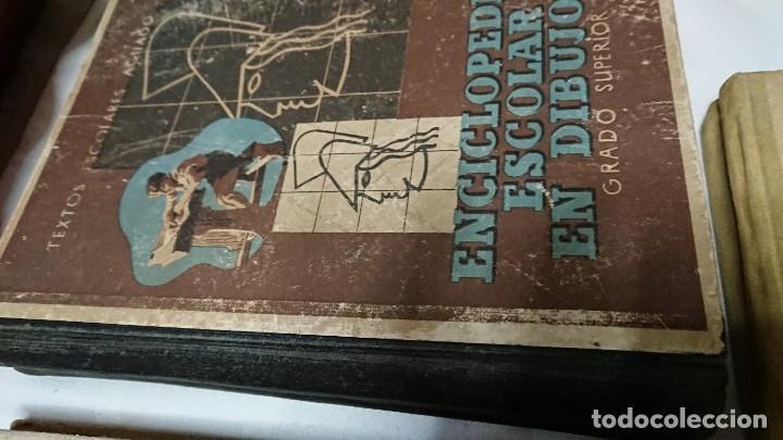 Enciclopedias de segunda mano: ENCICLOPEDIA ESCOLAR EN DIBUJOS GRADO ELEMENTAL, MEDIO Y SUPERIOR - Foto 3 - 183517355