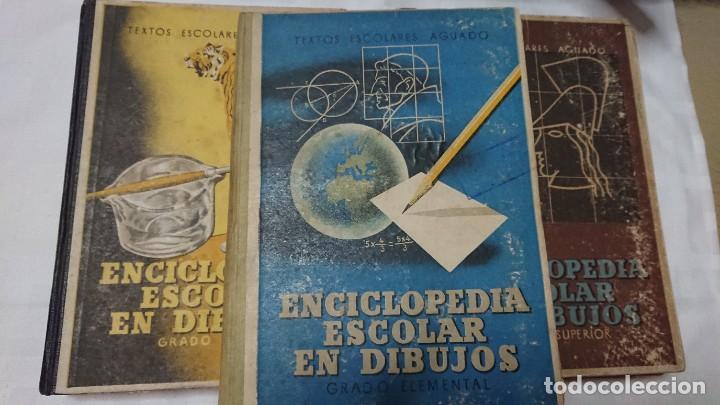 Enciclopedias de segunda mano: ENCICLOPEDIA ESCOLAR EN DIBUJOS GRADO ELEMENTAL, MEDIO Y SUPERIOR - Foto 6 - 183517355