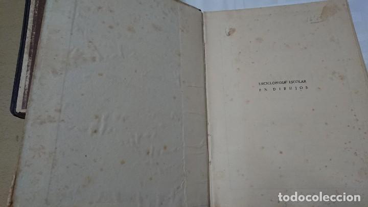 Enciclopedias de segunda mano: ENCICLOPEDIA ESCOLAR EN DIBUJOS GRADO ELEMENTAL, MEDIO Y SUPERIOR - Foto 7 - 183517355