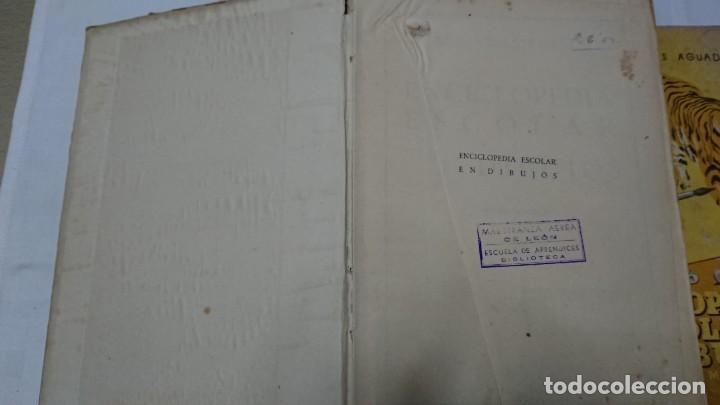 Enciclopedias de segunda mano: ENCICLOPEDIA ESCOLAR EN DIBUJOS GRADO ELEMENTAL, MEDIO Y SUPERIOR - Foto 10 - 183517355