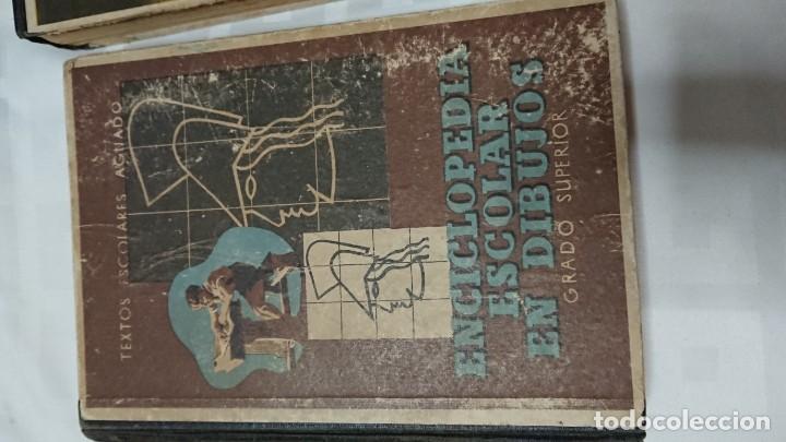 Enciclopedias de segunda mano: ENCICLOPEDIA ESCOLAR EN DIBUJOS GRADO ELEMENTAL, MEDIO Y SUPERIOR - Foto 14 - 183517355