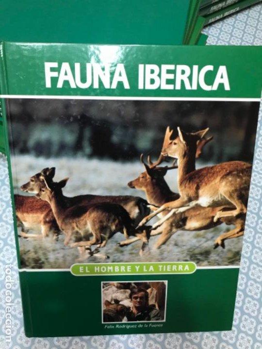 Enciclopedias de segunda mano: Fauna Ibérica - Foto 5 - 190195713