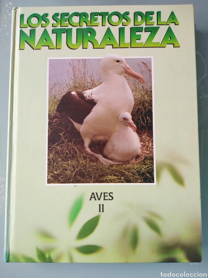 LOS SECRETOS DE LA NATURALEZA - LAS AVES II - CLUB INTERNACIONAL DEL LIBRO (1994) (Libros de Segunda Mano - Enciclopedias)