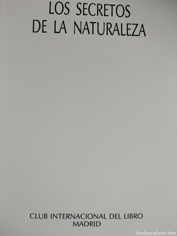 Enciclopedias de segunda mano: Los Secretos de la Naturaleza - Animales Anfibios y Terrestres I - (1994) - Foto 2 - 190505151