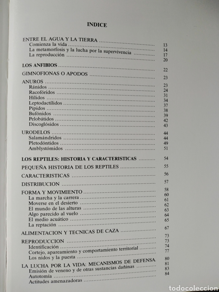 Enciclopedias de segunda mano: Los Secretos de la Naturaleza - Animales Anfibios y Terrestres I - (1994) - Foto 8 - 190505151