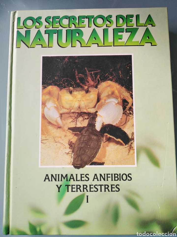 LOS SECRETOS DE LA NATURALEZA - ANIMALES ANFIBIOS Y TERRESTRES I - (1994) (Libros de Segunda Mano - Enciclopedias)