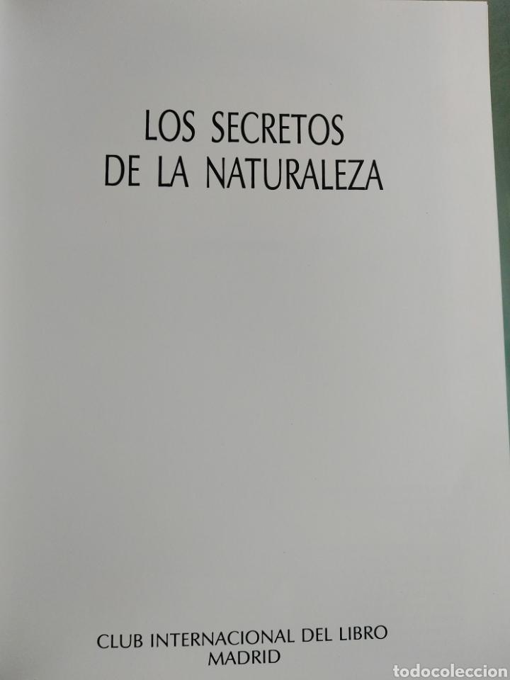 Enciclopedias de segunda mano: Los Secretos de la Naturaleza - Animales Anfibios y Terrestres II - (1994) - Foto 3 - 190506646