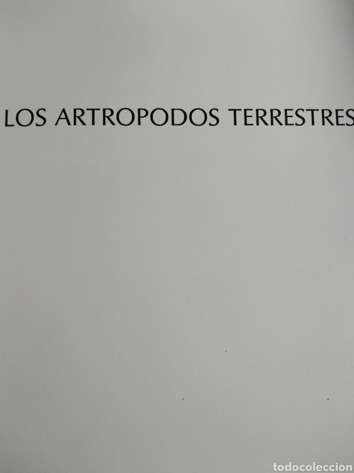 Enciclopedias de segunda mano: Los Secretos de la Naturaleza - Animales Anfibios y Terrestres II - (1994) - Foto 6 - 190506646