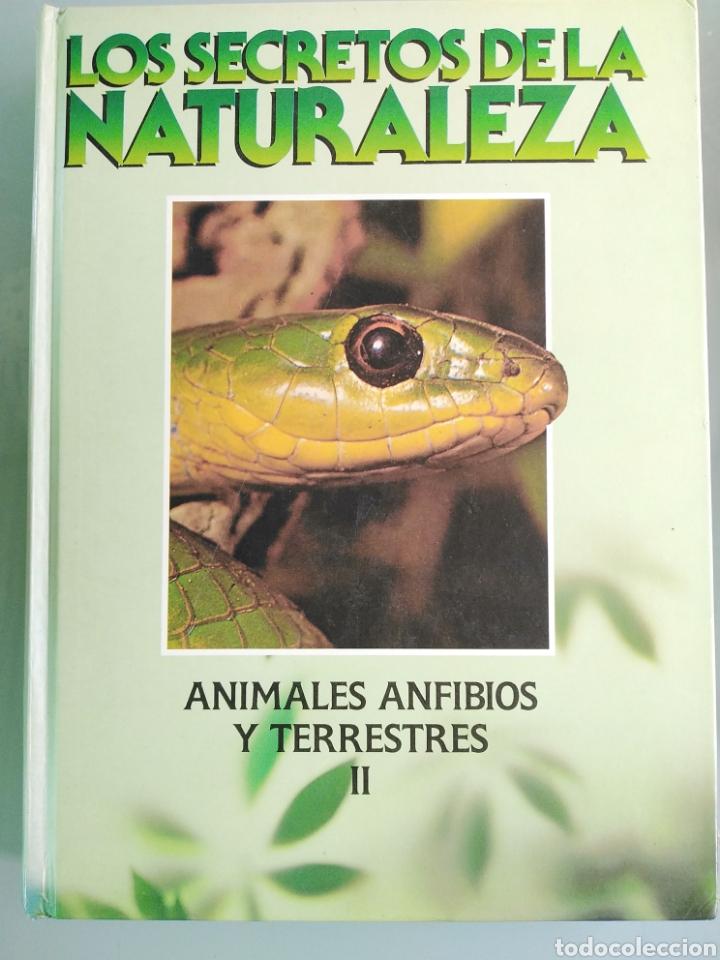 LOS SECRETOS DE LA NATURALEZA - ANIMALES ANFIBIOS Y TERRESTRES II - (1994) (Libros de Segunda Mano - Enciclopedias)