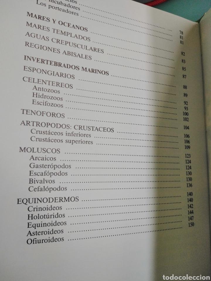 Enciclopedias de segunda mano: Los Secretos de la Naturaleza - Animales Acuáticos I (1994) - Foto 11 - 190508097