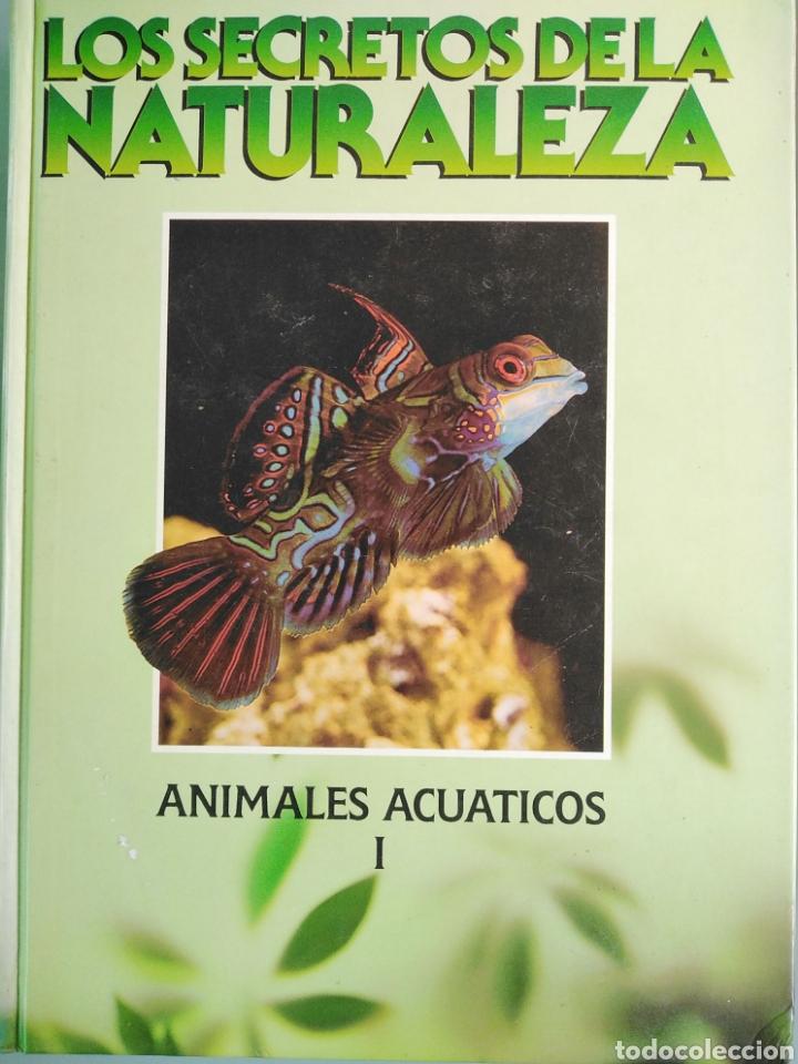 LOS SECRETOS DE LA NATURALEZA - ANIMALES ACUÁTICOS I (1994) (Libros de Segunda Mano - Enciclopedias)