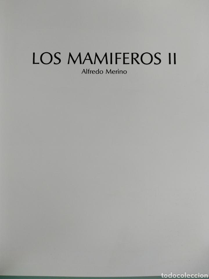 Enciclopedias de segunda mano: Los Secretos de la Naturaleza - Los Mamíferos II (1994) - Foto 3 - 190509220