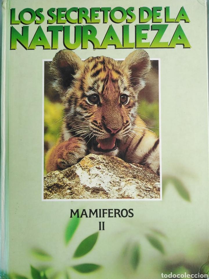 LOS SECRETOS DE LA NATURALEZA - LOS MAMÍFEROS II (1994) (Libros de Segunda Mano - Enciclopedias)