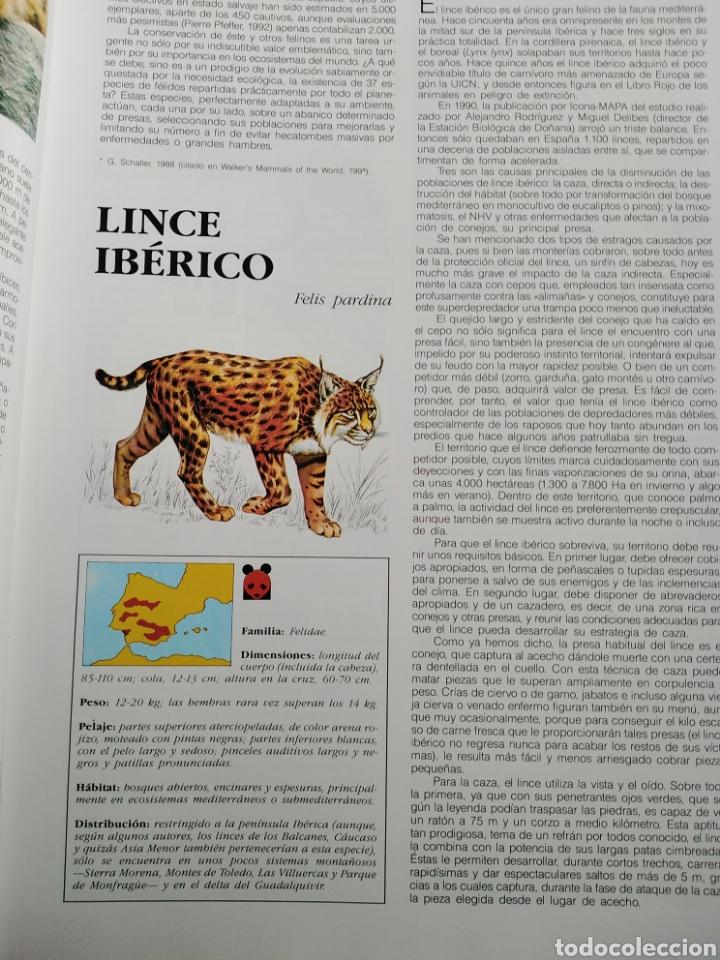 Enciclopedias de segunda mano: ENCICLOPEDIA SALVAT DE LA FAUNA MUNDIAL - ANIMALES EN PELIGRO - Foto 6 - 192042758