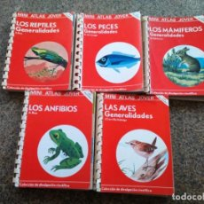 Enciclopedias de segunda mano: MINI ATLAS JOVER -- LOTE DE 5 ATLAS -- EDICIONES JOVER 1982 --. Lote 194916636