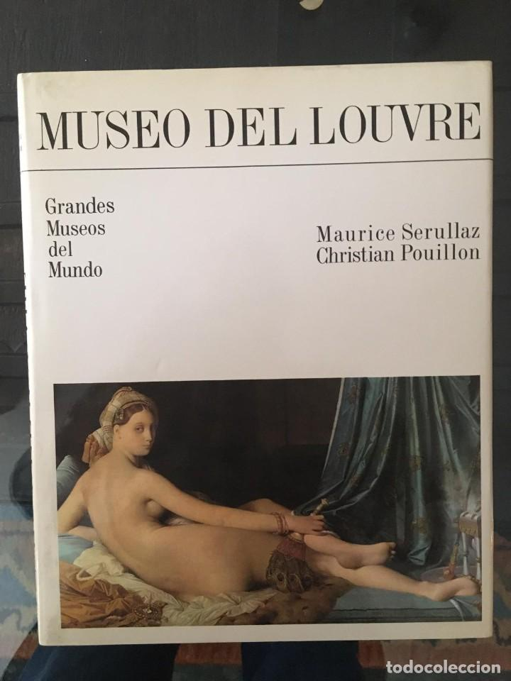 Enciclopedias de segunda mano: GRANDES MUSEOS DEL MUNDO ED.OCÉANO 1982 7 TOMOS - Foto 10 - 195144992