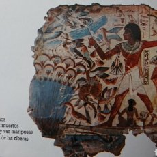 Enciclopedias de segunda mano: ENCICLOPEDIA VISUAL DE LOS SERES VIVOS TOMO III. EL PAIS AÑO 1994 283 PÁGINAS FN246. Lote 195260121