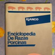 Livros em segunda mão: ENCICLOPEDIA DE RAZAS PORCINAS - DR. BRIGGS. Lote 197928583