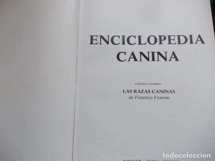 Enciclopedias de segunda mano: ENCICLOPEDIA CANINA NOGUER-ANESA-RIZZOLI - Foto 4 - 207209831